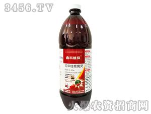 草莓红中柱根腐灵-哈漫迪