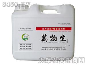 含海藻酸・钙水溶肥料-万物生-雷纳生物