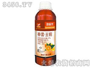 春雷・王铜-溃疡光-心禾生物