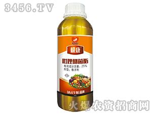吡唑醚菌酯-极康-心禾生物