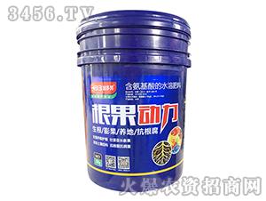 含腐植酸水溶肥料-根果动力-加多邦