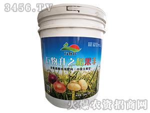 含氨基酸水溶肥料-万物升之稻果丰-万物升