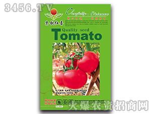 西红柿种子-旺达2018F1-满天红日