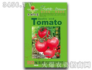 西红柿种子-京丰F1-满天红日