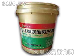生化黄腐酸微生物菌剂(黄桶)-菌豆豆-启力