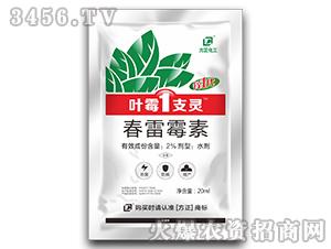 2%春雷霉素水剂-叶霉1支灵-方正化工