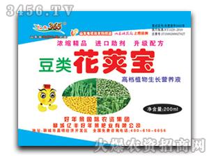 高档植物生长营养液-豆