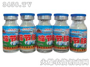 缩节胺(粉剂)-亿丰