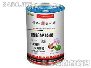 茄果类专用蜡蚧轮枝菌-科加・整一片3号-北方农人