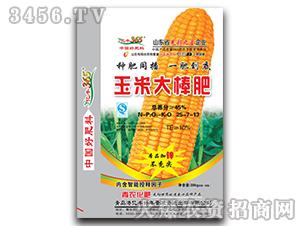 玉米大棒肥-亿丰365