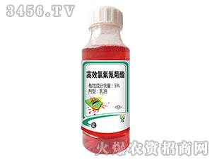 5%高效氯氰菊酯乳油-