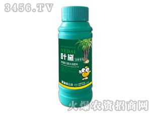 甘蔗专用微量元素水溶肥