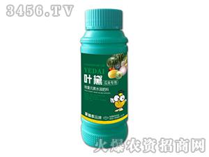 瓜类专用微量元素水溶肥