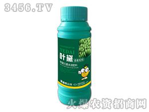 香蕉专用微量元素水溶肥