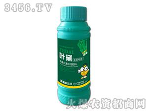 韭菜专用微量元素水溶肥