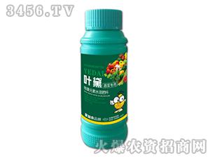 蔬菜专用微量元素水溶肥