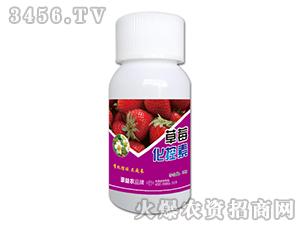 草莓化控素-豪利农