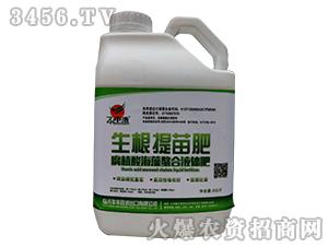 腐植酸水溶肥料-生根提