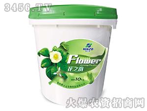 植物刺激素-花之韵-欣正达