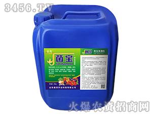 微生物菌剂(桶)-菌宝-晨茂