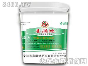 大量元素水溶肥290-80-130+TE-叶魔方(大桶)-喜满地