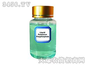液体聚磷酸钾-青岛再绿