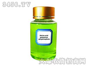液体氨基酸聚磷酸钾-青岛再绿