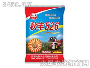玉米杂交种子-秋丰52