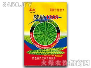 油菜种子-陕油1209