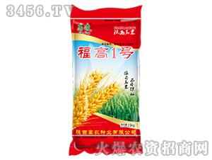 小麦种子-福高1号-高凌