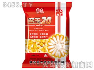 玉米杂交种-名玉20-高凌