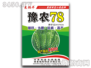 豫农78-小麦种子-佳瑞种业