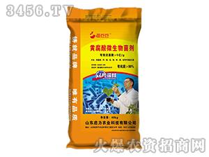 黄腐酸微生物菌剂-菌豆豆-启力农业