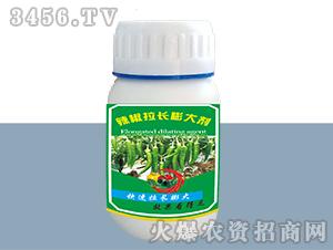 辣椒拉长膨大剂-德邦农