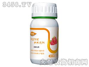 草莓专用微生物菌纳米液肥-中蓓-民立丰