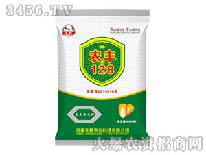 玉米杂交种子-农丰12