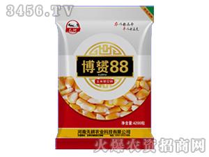 玉米单交种子-博�S88