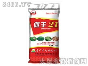 小麦种子-偃丰21-先耕农业