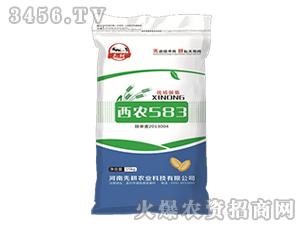 小麦种子-西农583-先耕农业