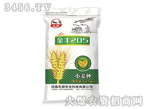 小麦种子-金丰205-先耕农业