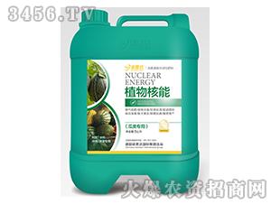 瓜类专用植物核能-诺思达