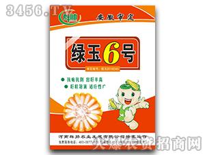 绿玉6号-玉米种子-群帅