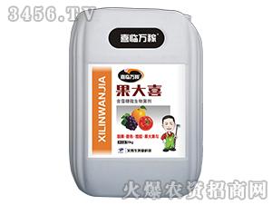 含藻糖微生物菌剂-果大喜-艾普生