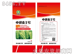 中研麦1号-小麦种子-鑫博