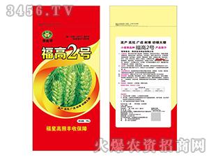 15kg福高2号-小麦种子-鑫博