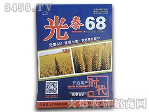 光泰68-小麦种子-垄上行
