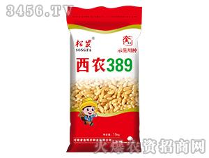 西农389-小麦种子-金博农