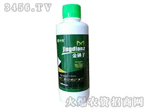 金碘子-柯依之绿