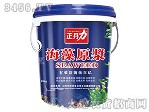 海藻原浆-正丹力-金凯阳