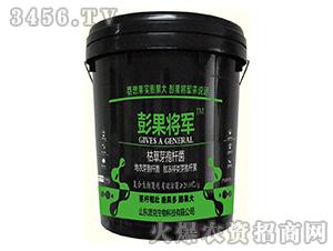 20kg枯草芽孢杆菌-彭果将军-山东派克